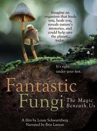 Fantastic Fungi image