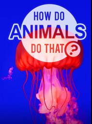How Do Animals Do That image