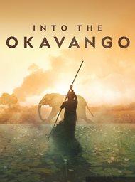 Into the Okavango image