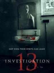 Investigation 13 image