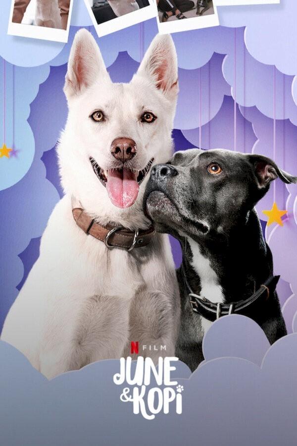 June & Kopi image