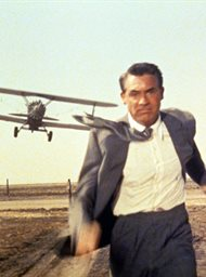 North by Northwest image