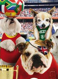 Pups United image