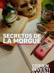 Secrets Of the Morgue image