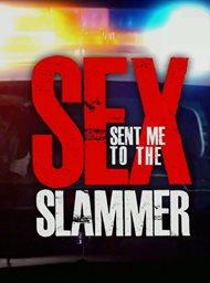 Sex sent me to the slammer image