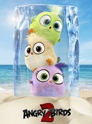 The Angry Birds Movie 2 image