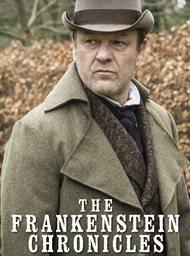 The Frankenstein Chronicles image