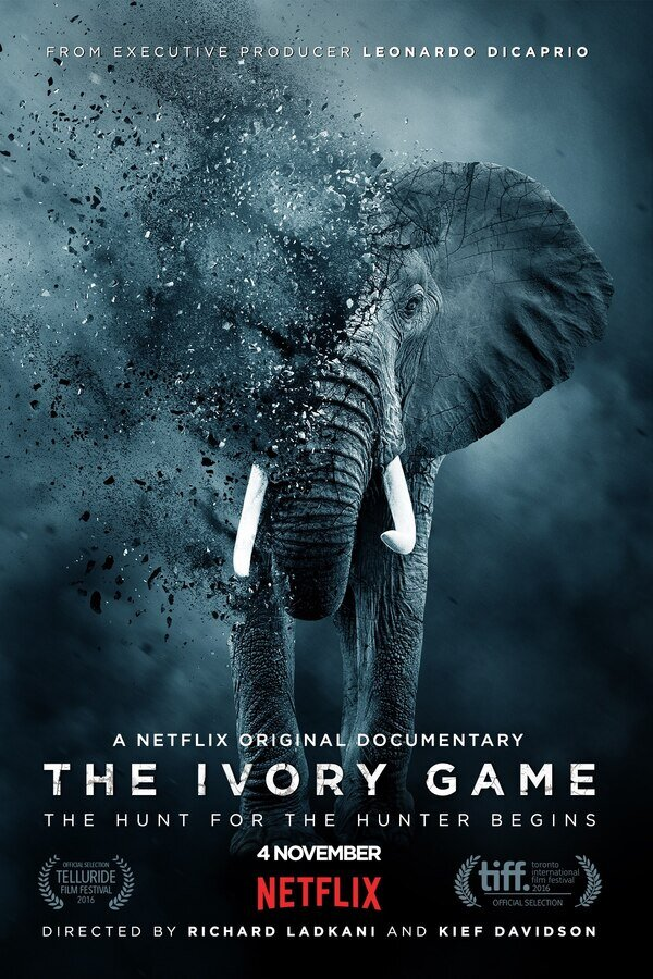 The Ivory Game image
