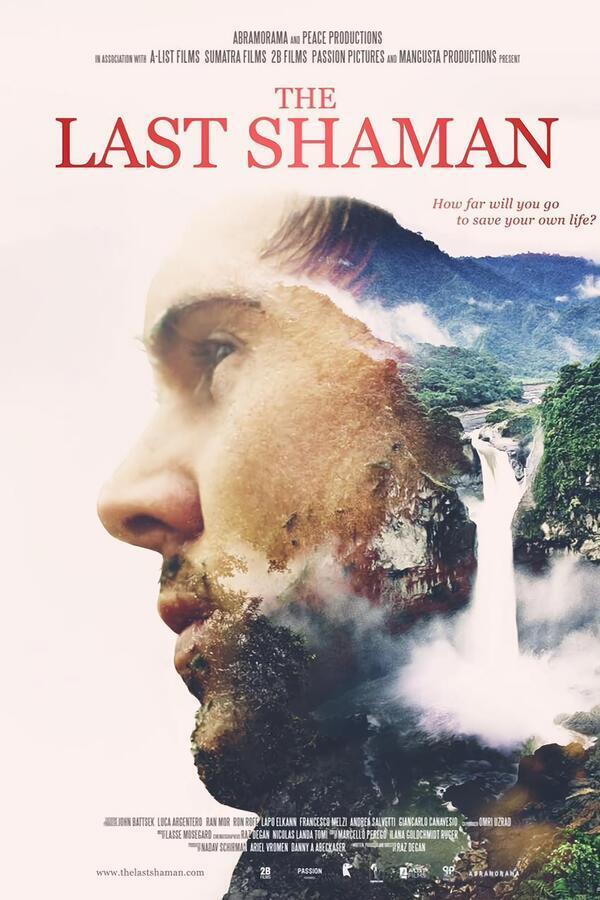 The Last Shaman image