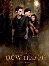 The Twilight Saga: New Moon image