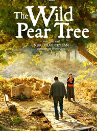The Wild Pear Tree image