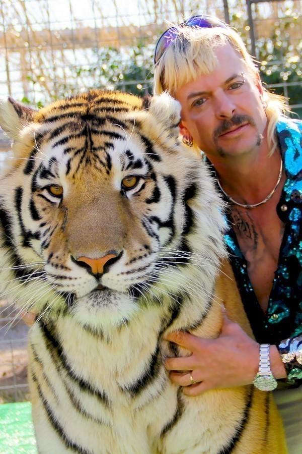 Tiger king image
