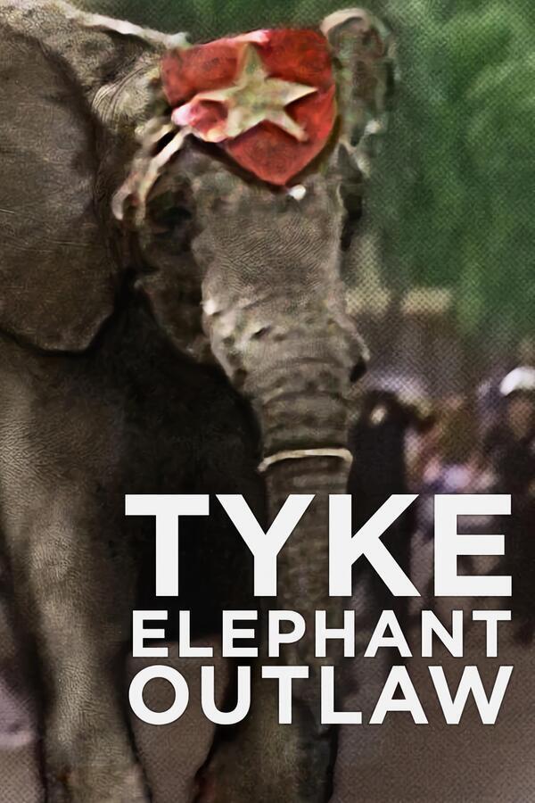 Tyke Elephant Outlaw image