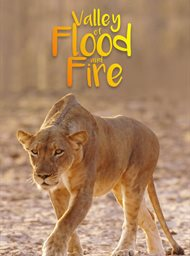 Vallei van vloed en vuur image
