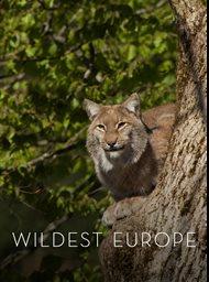 Wildest Europe