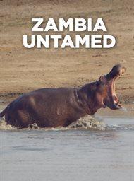 Zambia Untamed