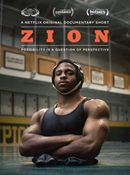 Zion image