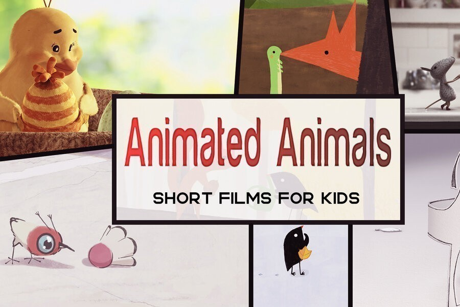 Animated Animals - Short Films for Kids image