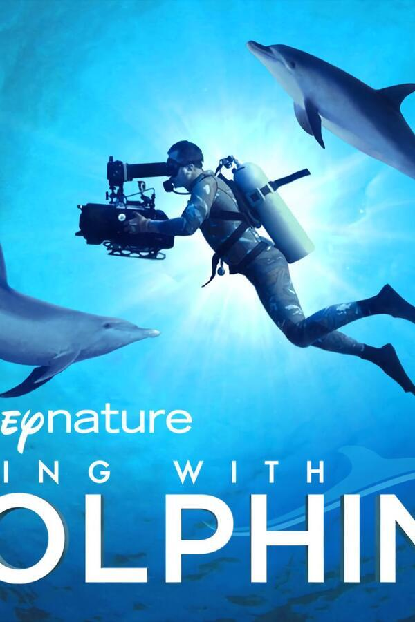 Diving with Dolphins image