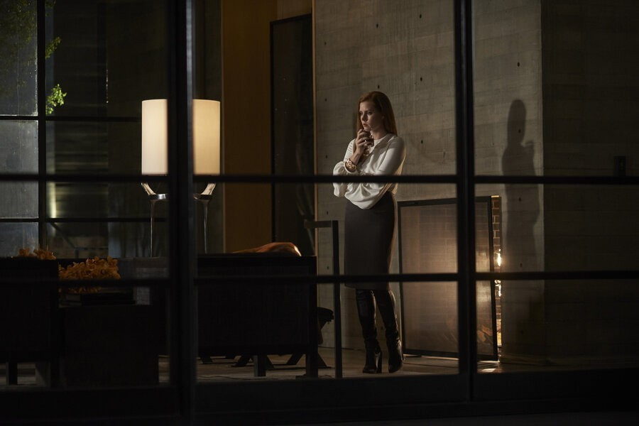 Nocturnal Animals image
