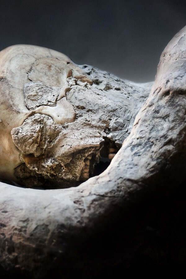 Pompeii: The Secrets of the Petrified Bodies image
