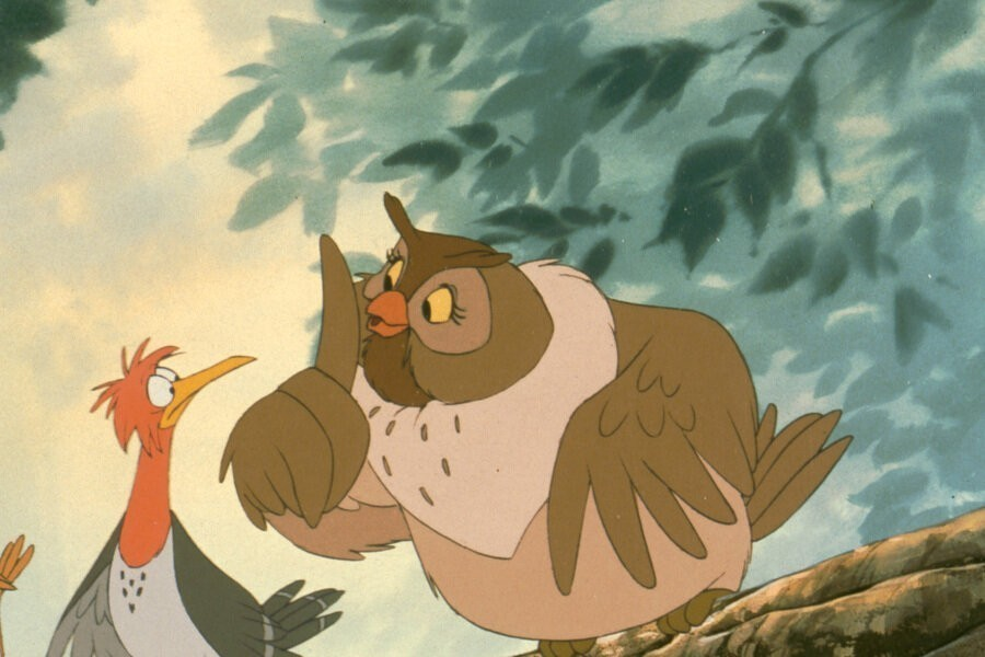 The Fox and the Hound image