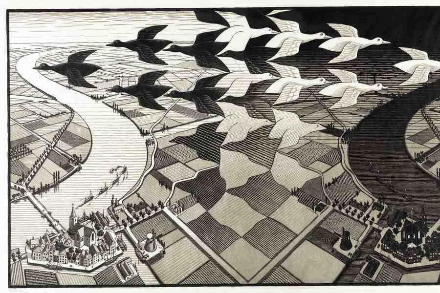 M.C. Escher - Het oneindige zoeken image
