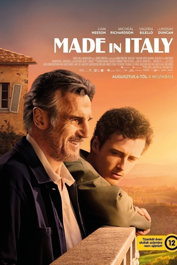 Made in Italy image