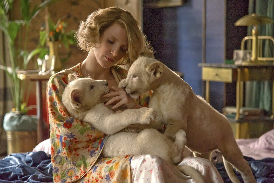 The Zookeeper's Wife image