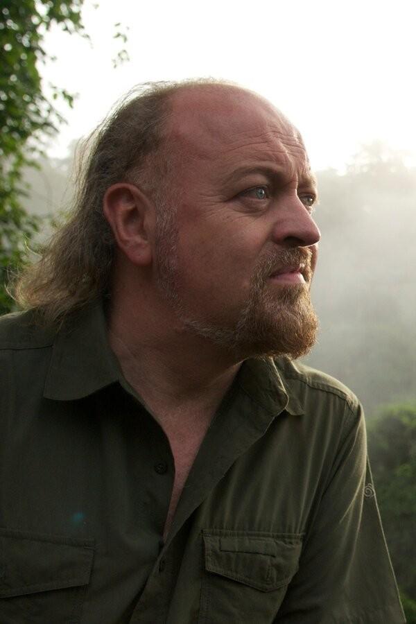 Bill Bailey's Jungle Hero image