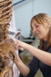 Prehistoric Autopsy
