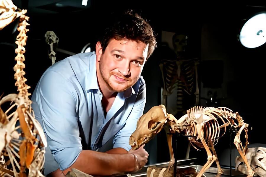 Secrets of bones image