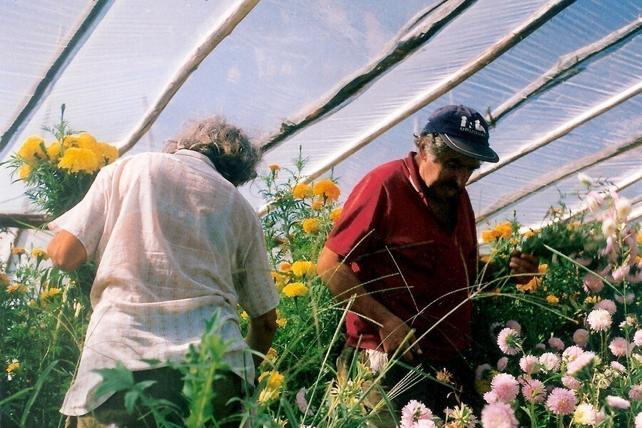 Pepe Mujica, lessons from the flowerbed image