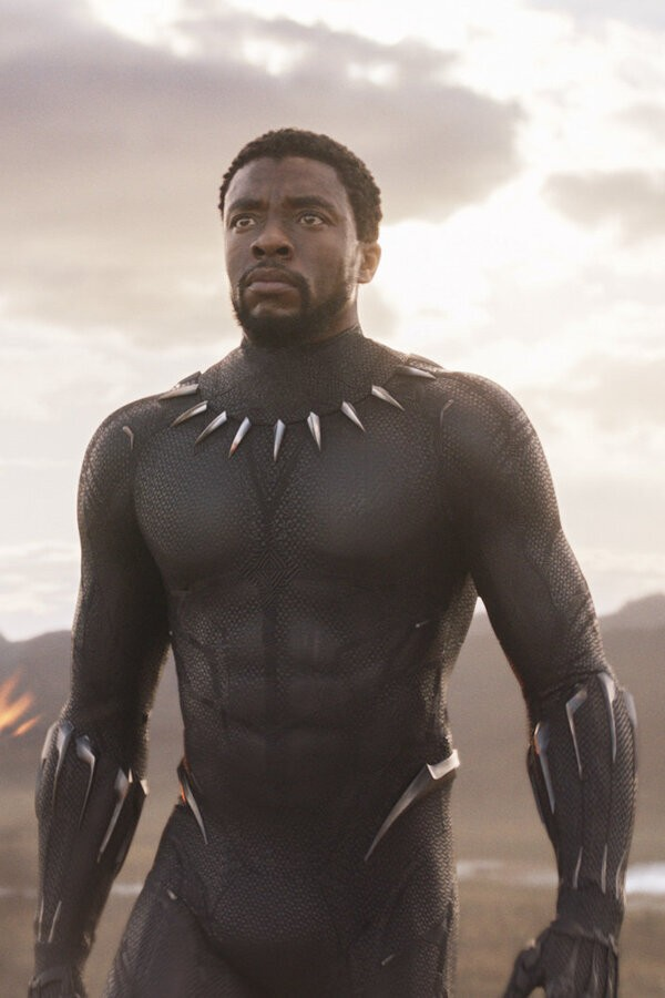 Chadwick Boseman: A Tribute for a King image