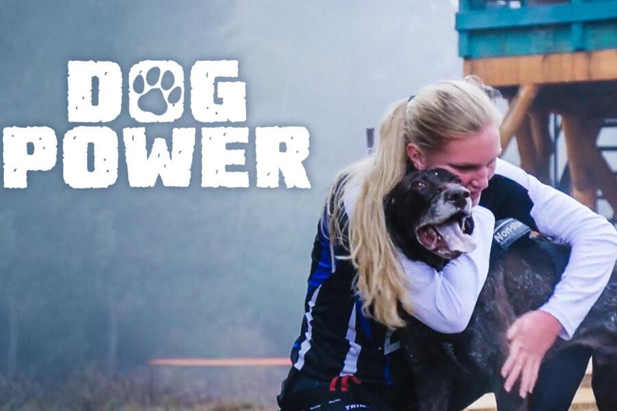 Dog Power image