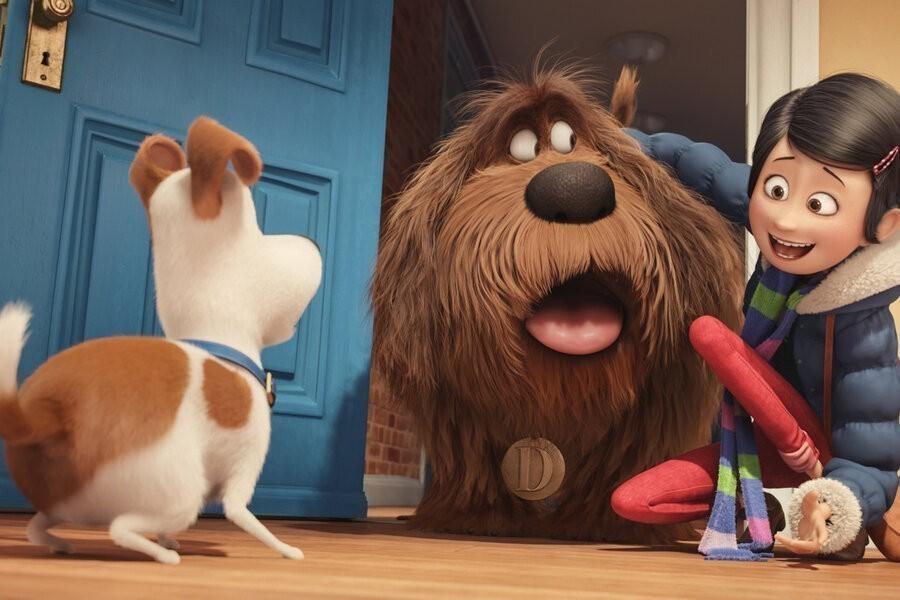 The Secret Life of Pets image