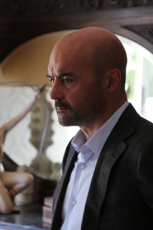 Il Commissario Montalbano: Un covo di vipere image