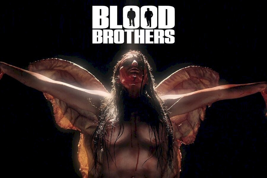 Blood Brothers image