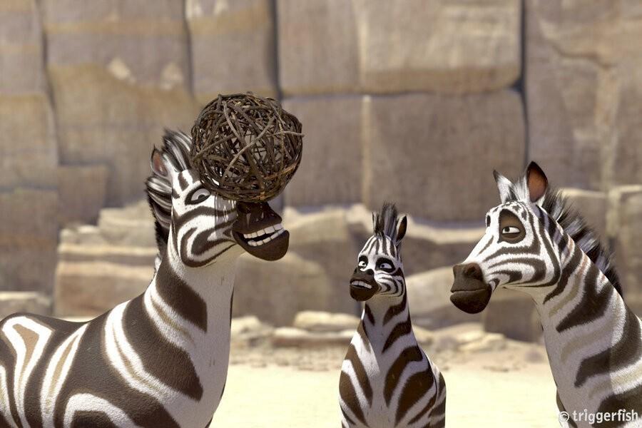 Koemba: De zebra die zijn strepen kwijt is image