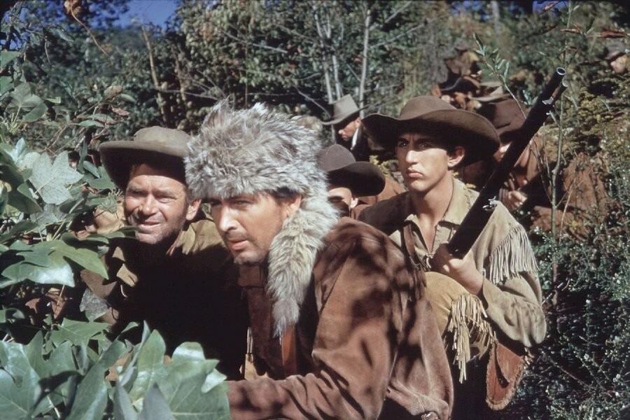 Davy Crockett: King of the Wild Frontier image