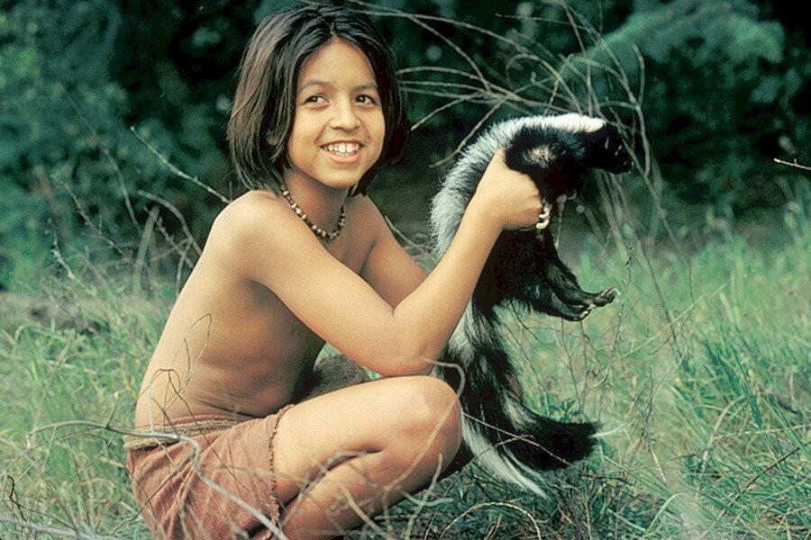 The Jungle Book: Mowgli's Story image
