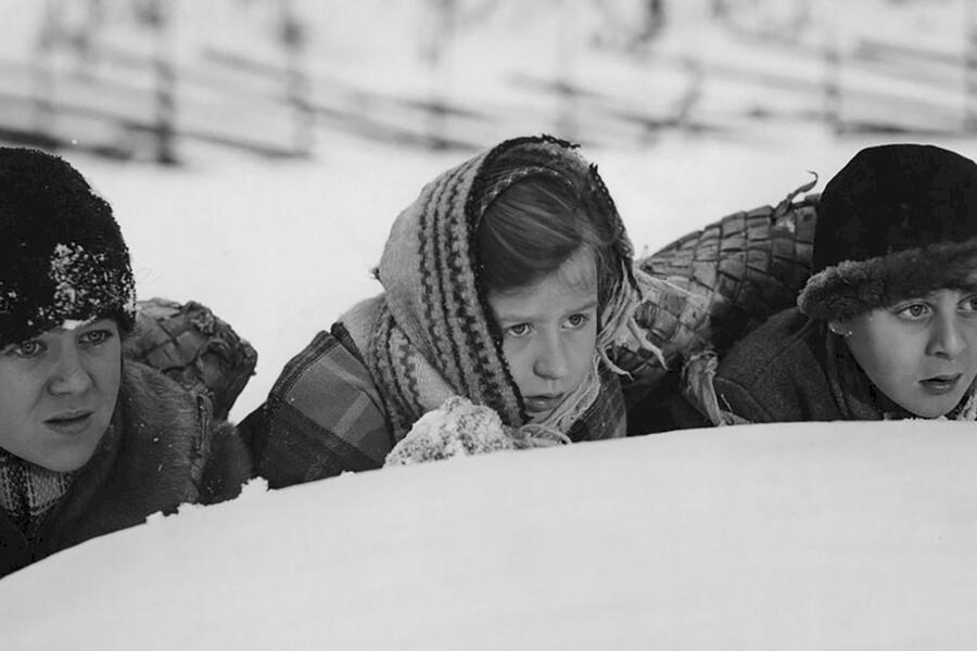 Barnen från Frostmofjället image