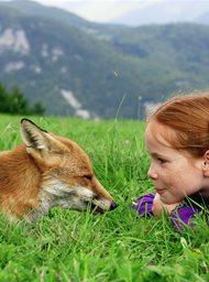 Het vosje en het meisje
