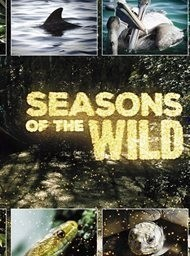 Seasons in the wild