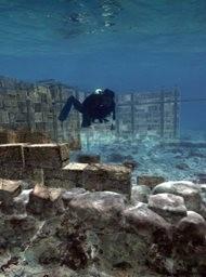 City Beneath the Waves - Pavlopetri