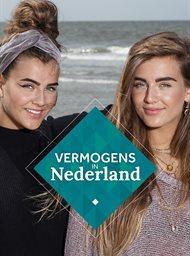 Vermogens in Nederland